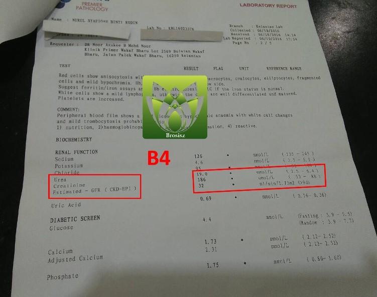 Brosisz-肾衰竭见证B4