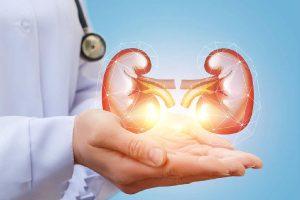 肾炎靠什么恢复?