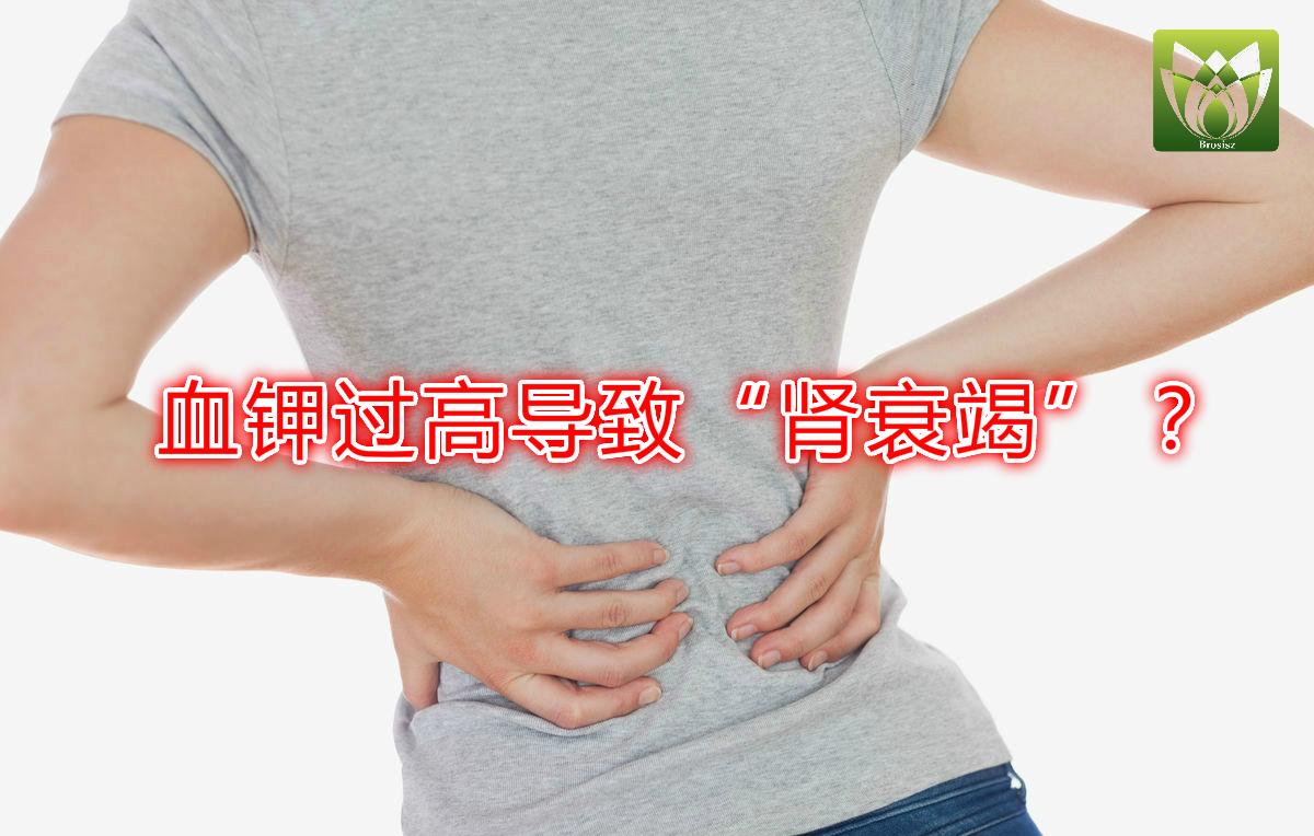 血钾过高导致肾衰竭?