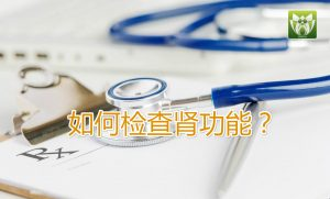 肾功能检查什么?