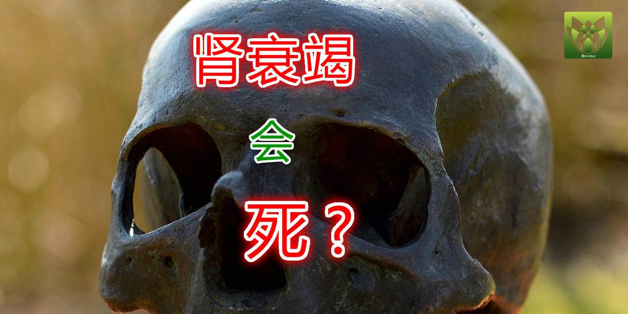 肾功能衰竭会死吗?