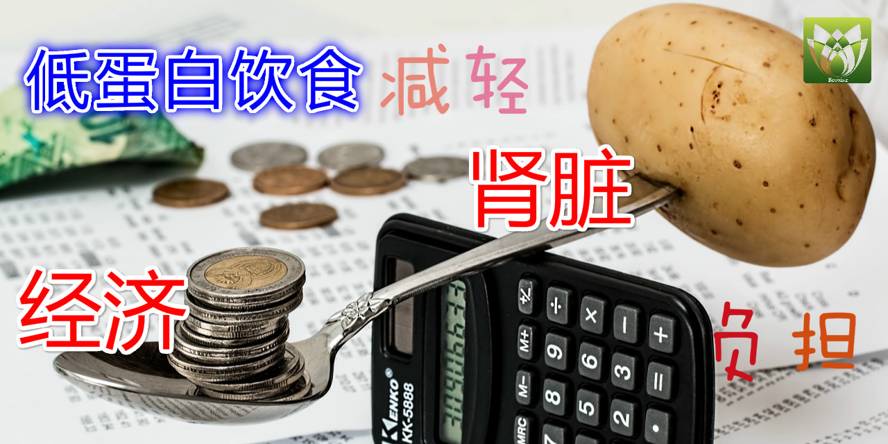 低蛋白饮食,减轻肾脏负担,减轻经济负担!