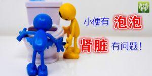 泡泡尿,肾脏发出紧讯!如何改善泡泡尿?