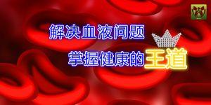 解决血液问题,才是掌握健康的王道!