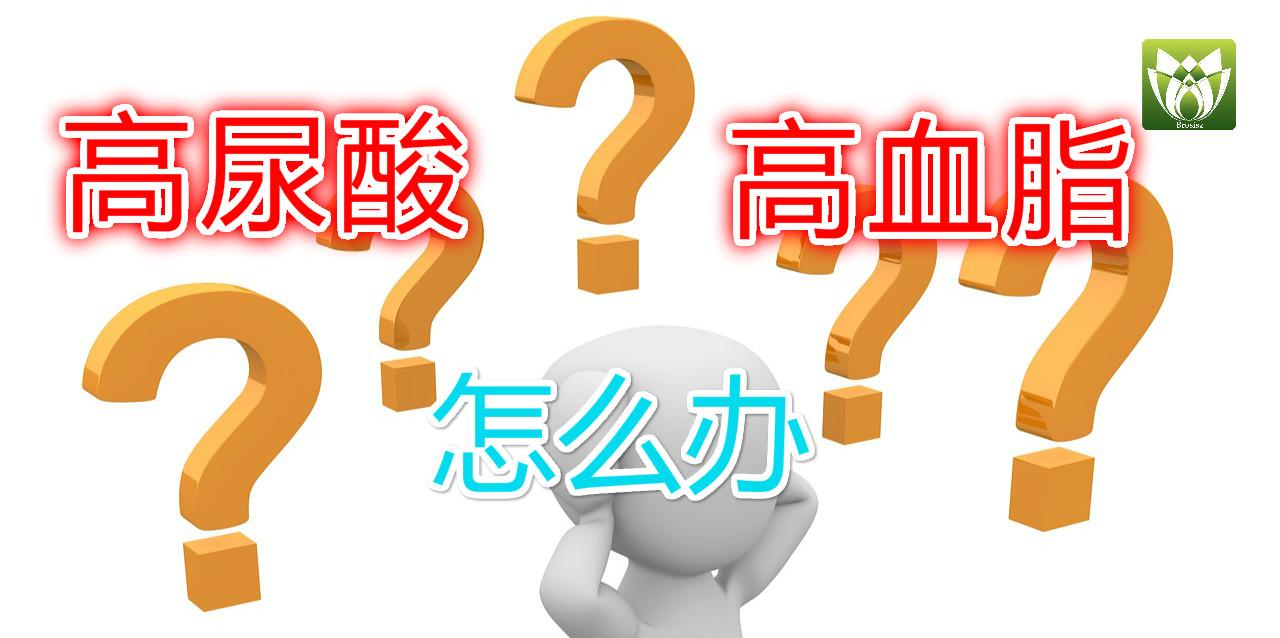 高尿酸高血脂怎么办?