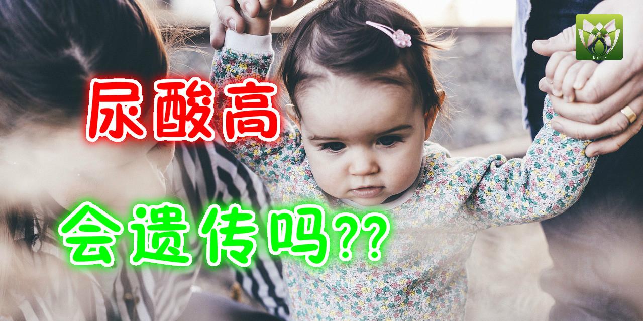 尿酸高会遗传吗?